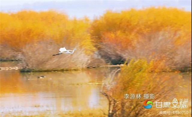 微信图片_20210113091401_副本.jpg