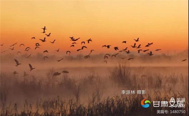微信图片_20210113091329_副本.jpg